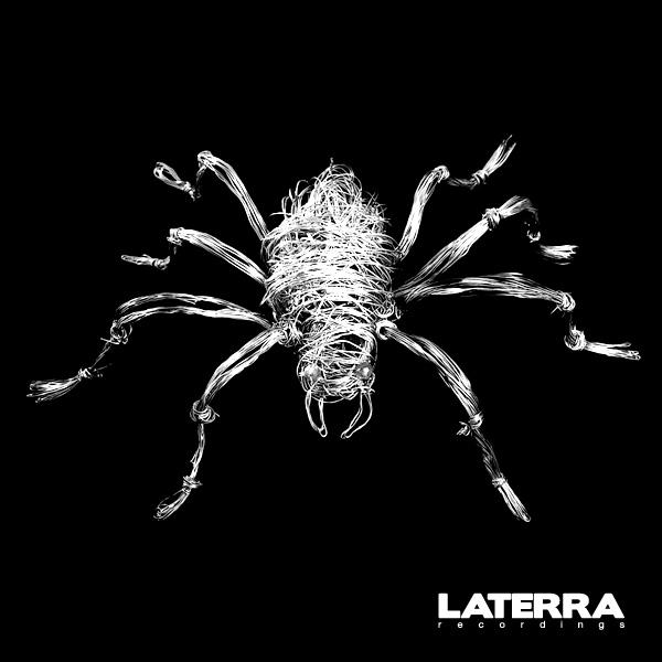 LT004_tarantavirus